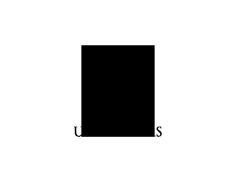 URIEL SALAS homepage-logo
