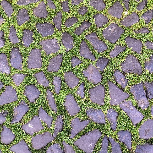 #grass #green #stones #prints #Lisbon