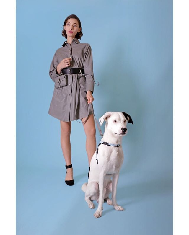 BAEBCLUB is a high quality directional line of clothing and accessories for beloved dogs and their elegant owners created by Caroline Roberts this year , manufactured in Italy using some of the country finest suppliers , now at #publicimagepr for #ss2020 #pressdays @baebclub #baebclub @nobshowroom #readytowear #doglovers #dogwear #petaccessories #petclothing #dogsofinstagram #dog #luxury #madeinitaly